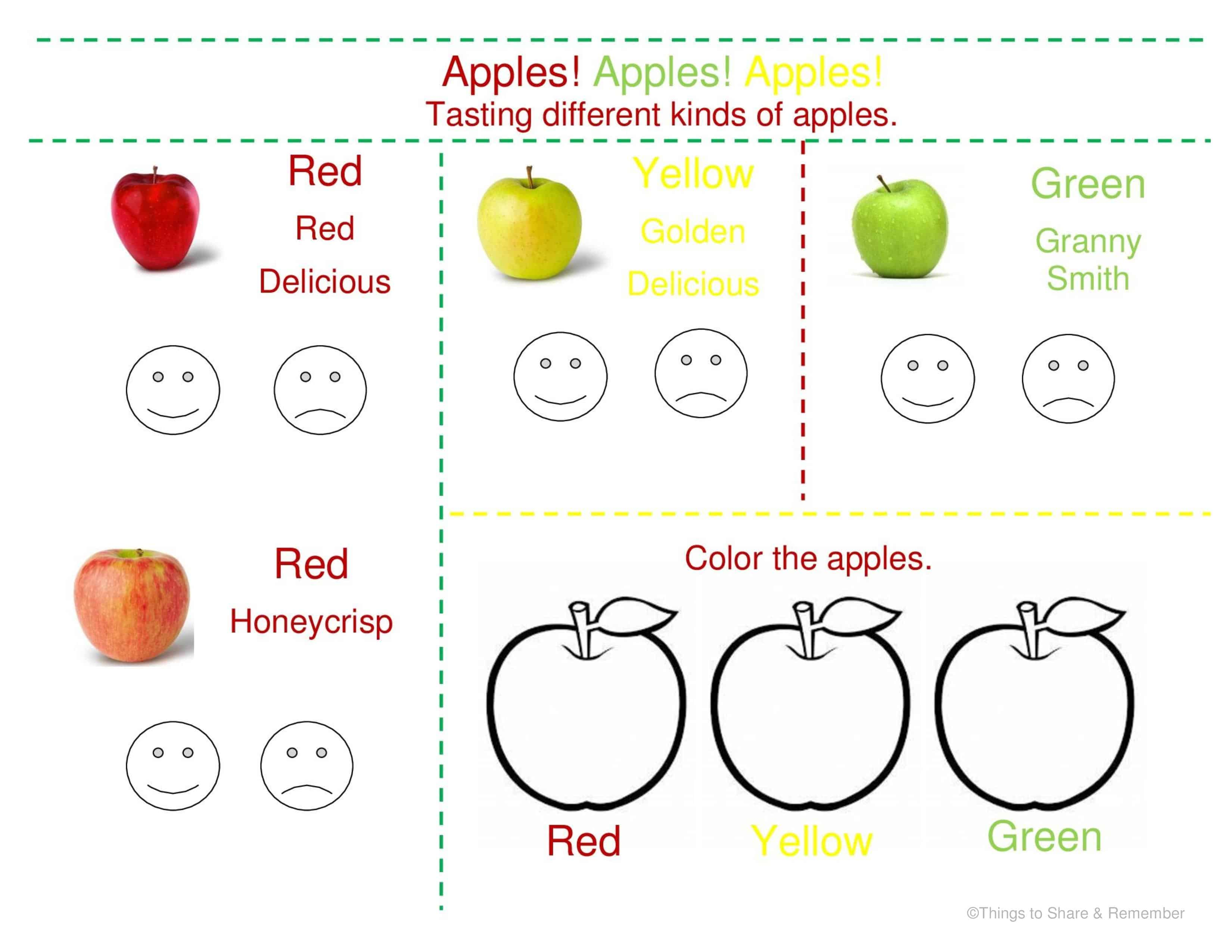 worksheet Apple Worksheets Kindergarten apple tasting in preschool