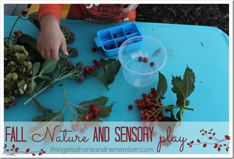 fall nature and sensory play