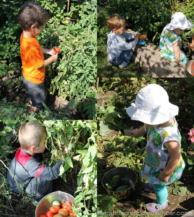 garden play in preschool
