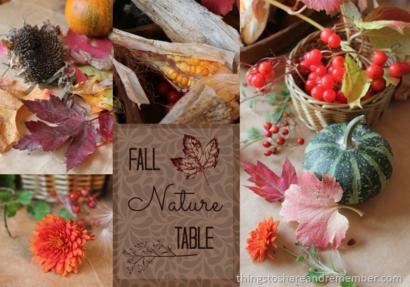 Fall Nature Table