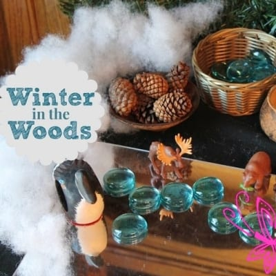 Winter in the Woods Small World