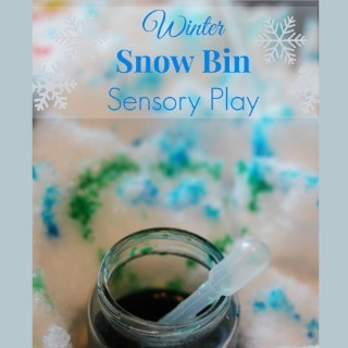 winter snow bin sensory play