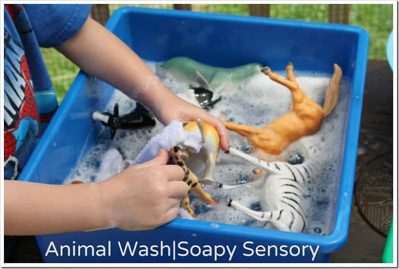 child washing play animals