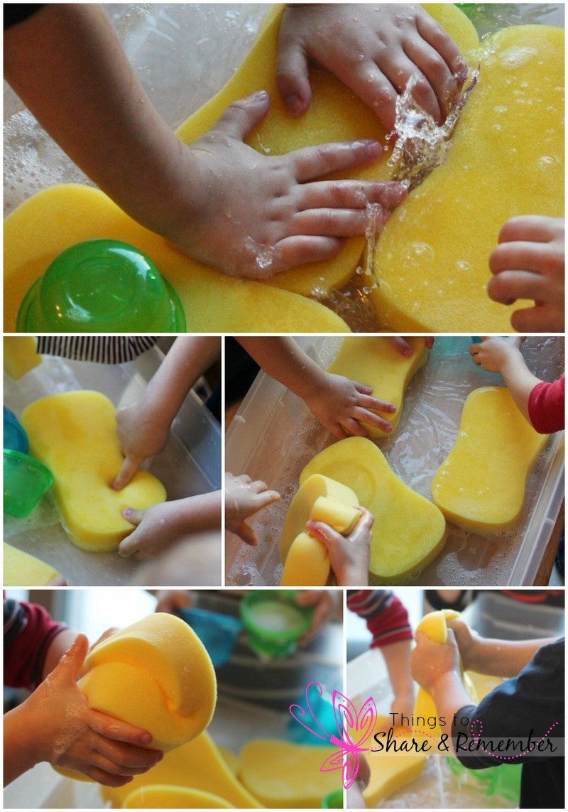 sponges in the water table picture collage