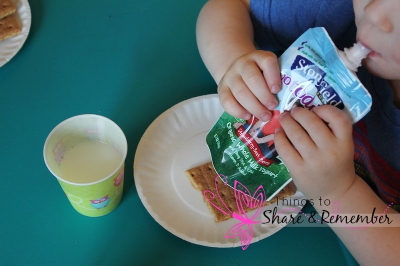 stonyfield yogurt pouches