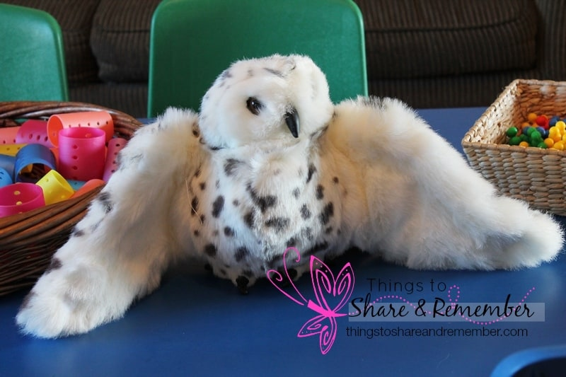 snowy owl puppet  super fun circle time