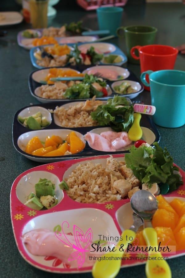 chicken kabobs, brown rice, avocado, yogurt, peaches, milk - Homemade & Healthy Child Care Lunches