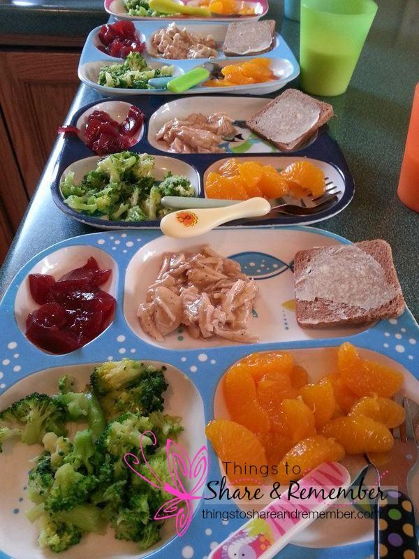 turkey breast & gravy ww bread broccoli mandrin oranges cranberry sauce - Homemade & Healthy Child Care Lunches