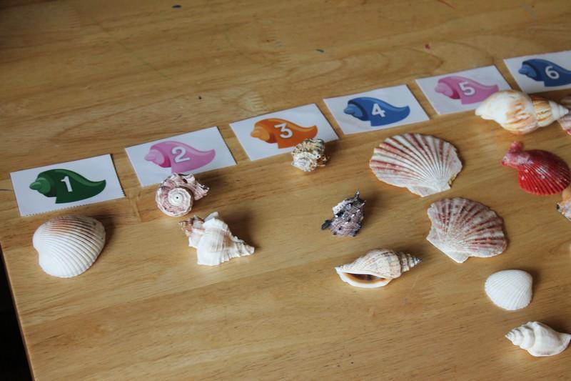counting shells preschool math #MGTblogger