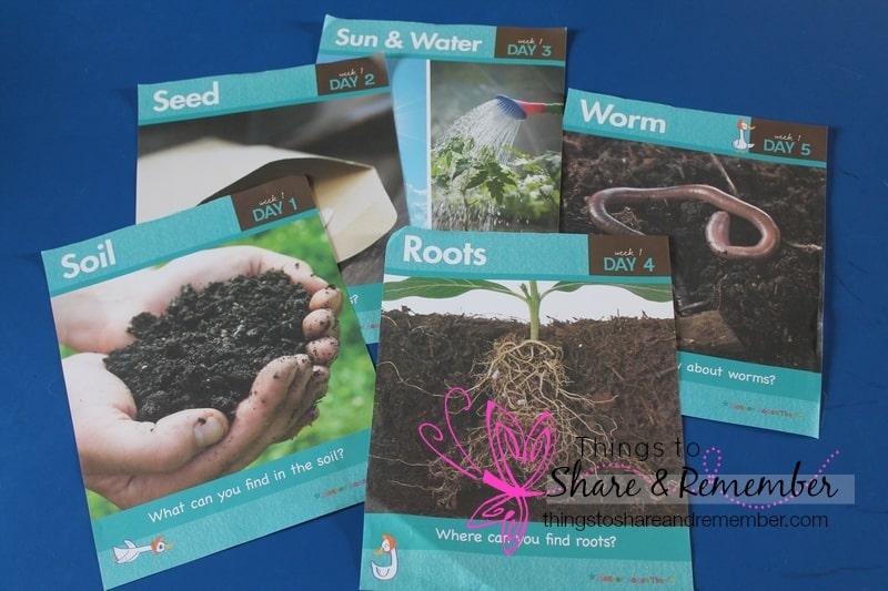 growing gardens week 1 planting gardens
