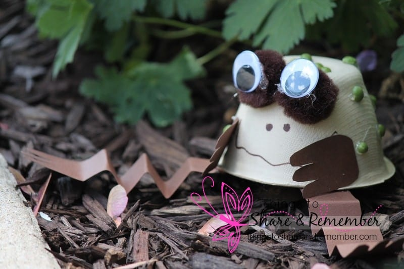 toad craft in the garden