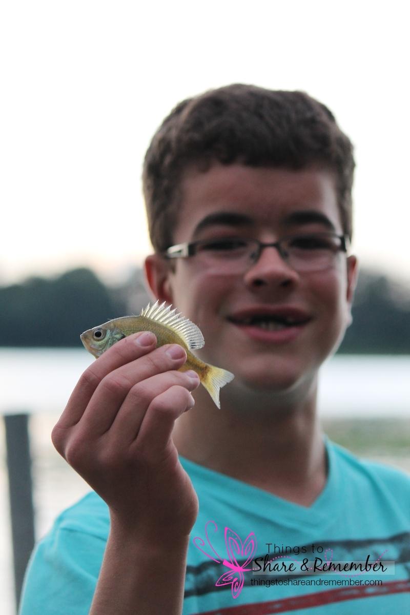 Brettsmallfish