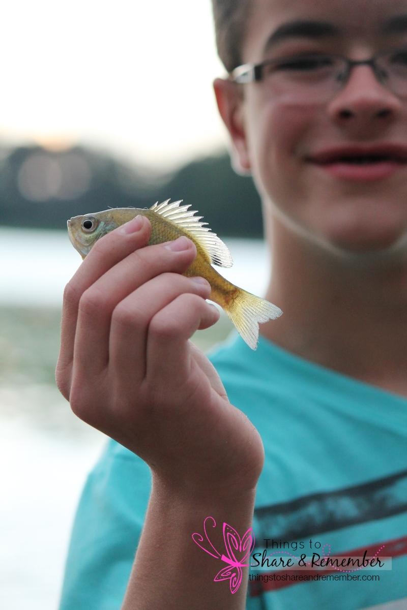 Brettsmallfish2