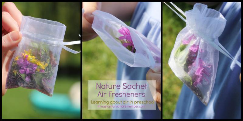 Nature Sachet Air Fresheners
