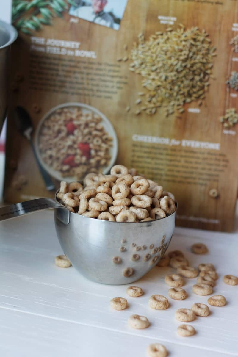 Glue-Free Cheerios #GiveABox #CollectiveBias #Ad