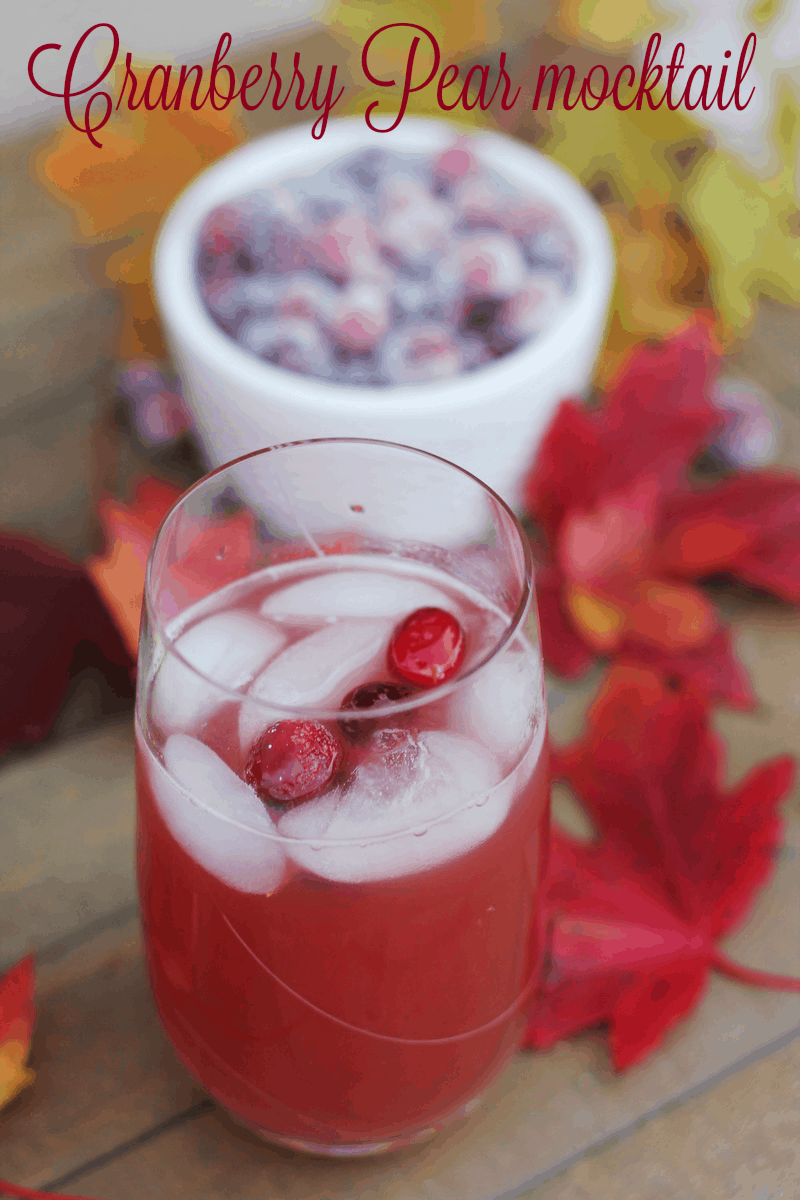 Cranberry Pear Mocktail