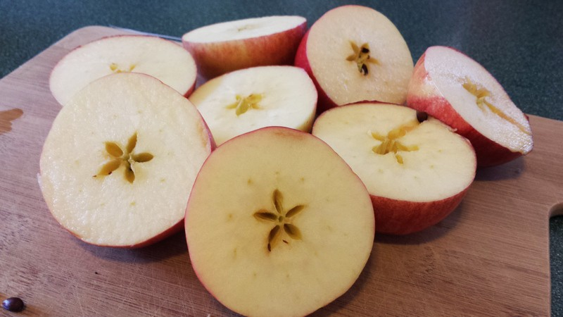 apples have seeds - cut apples with star design in preschool   Exploring Seeds in Preschool - sunflower and garden sensory bin for fall orchard theme