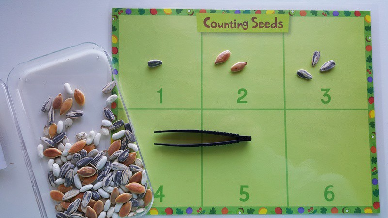 Counting Seeds Mat in Preschool #MGTblogger #intheorchard  Exploring Seeds in Preschool - sunflower and garden sensory bin for fall orchard theme