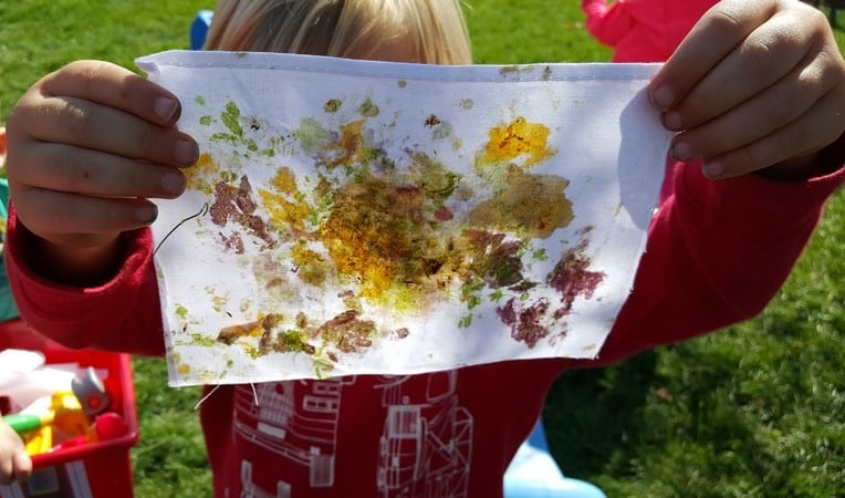 pounding colors from plants on fabric nature activity for preschoolers #MGTblogger