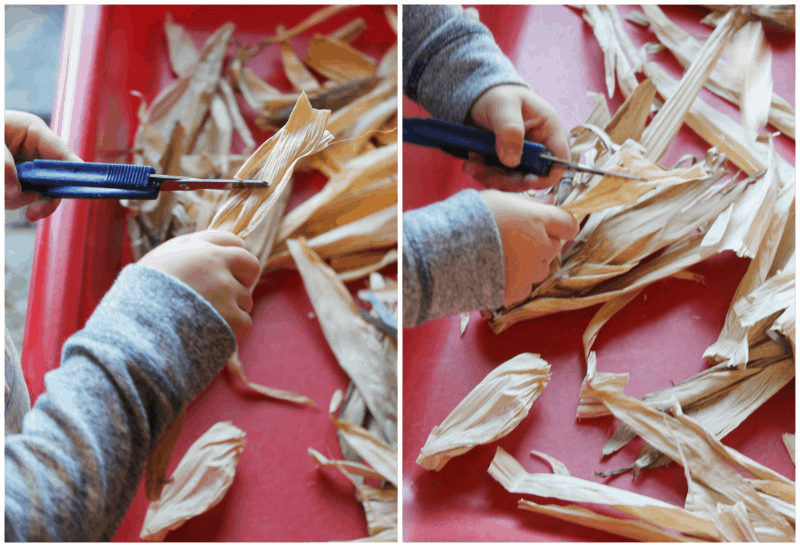 Cutting corn husks Indian Corn Play and Learn Activities