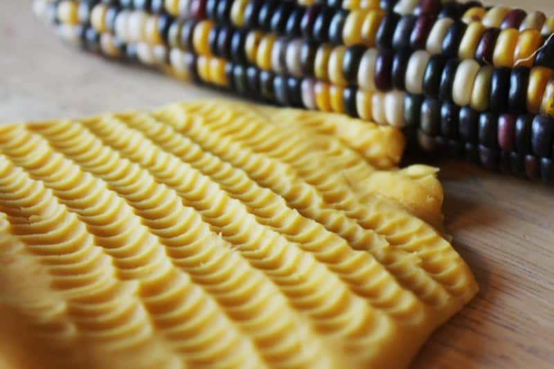 Indian Corn Play and Learn Activities