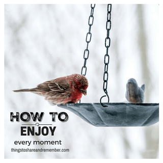 How to Enjoy Every Moment