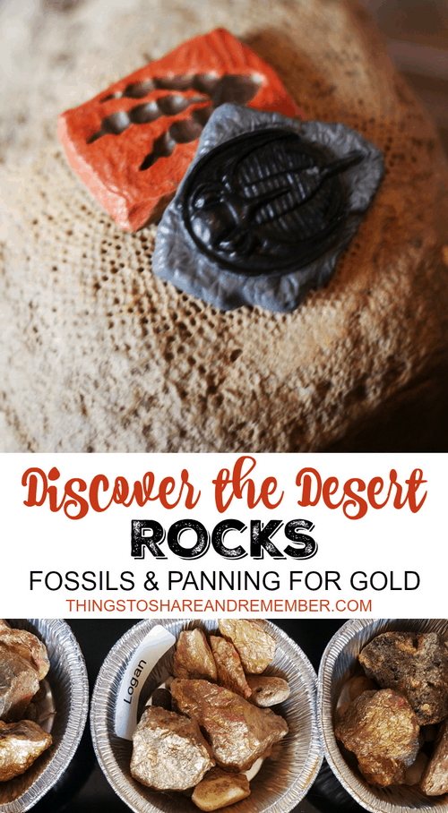 Discover the Desert Rocks fossils & panning for gold #MGTblogger