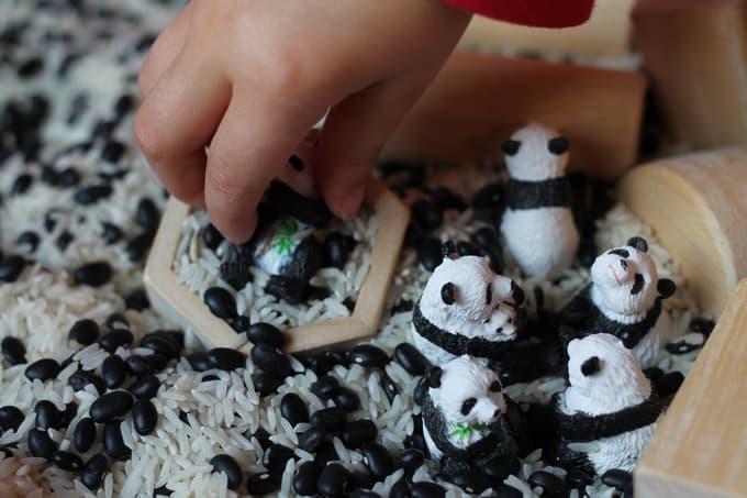 Black and white panda bear sensory bin