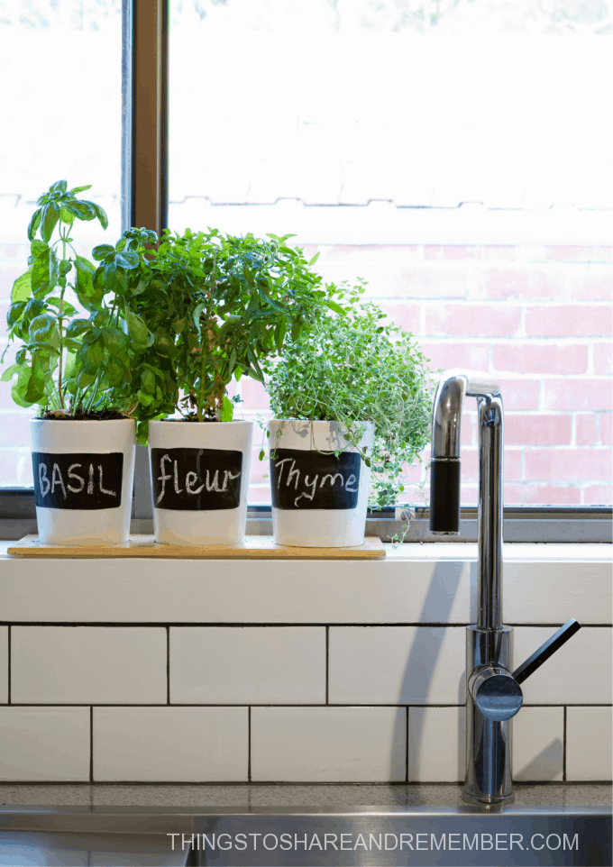kitchen sink backsplash window sill with herb garden