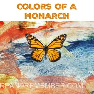 COLORS OF A MONARCH