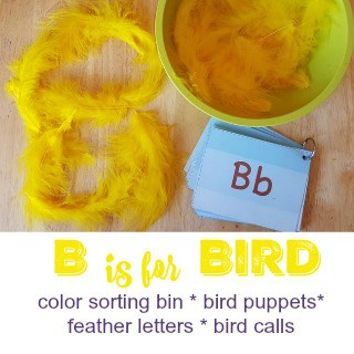 B is for Bird #MGTblogger