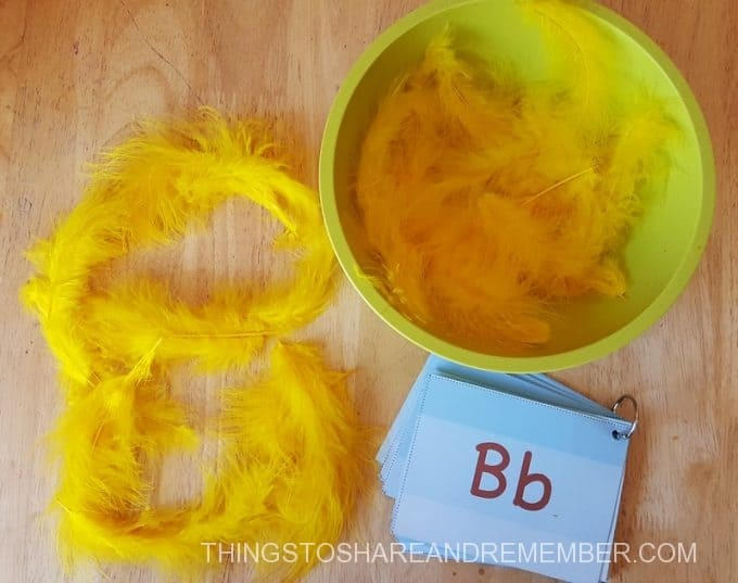 Make a B with feathers