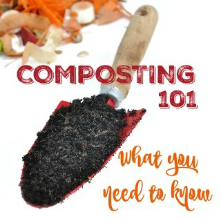 Composting 101 What You Need to Know