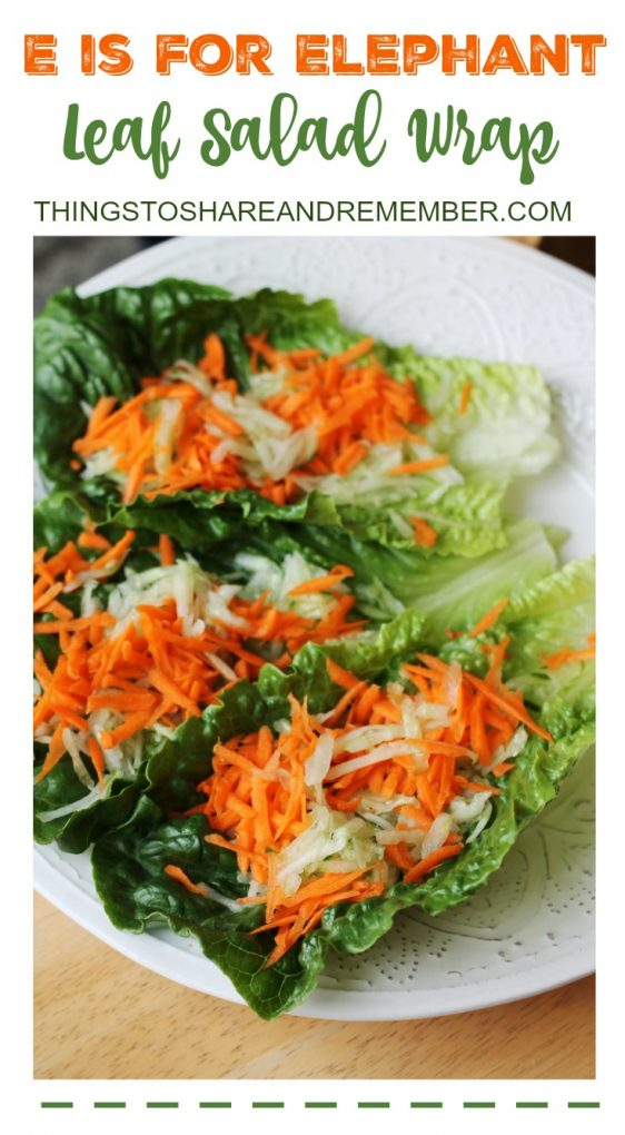 E is for Elephant Leaf Salad Wrap