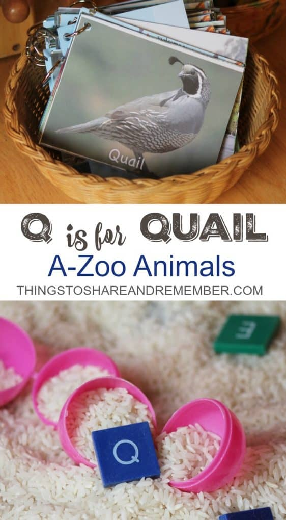 Q is for Quail A-Zoo Animals