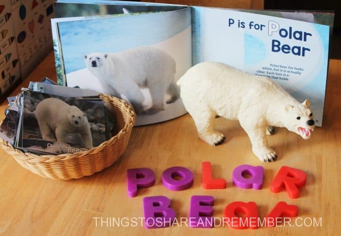 p is for polar bear