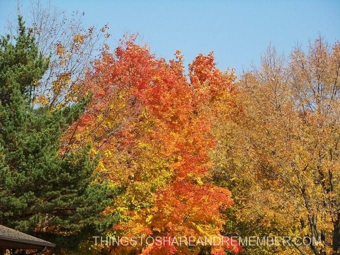 Best Fall Foliage in Beautiful Wisconsin
