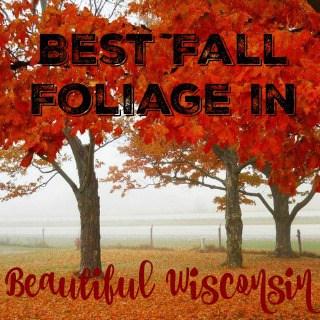 Best Fall Foliage in Beautiful Wisconsin