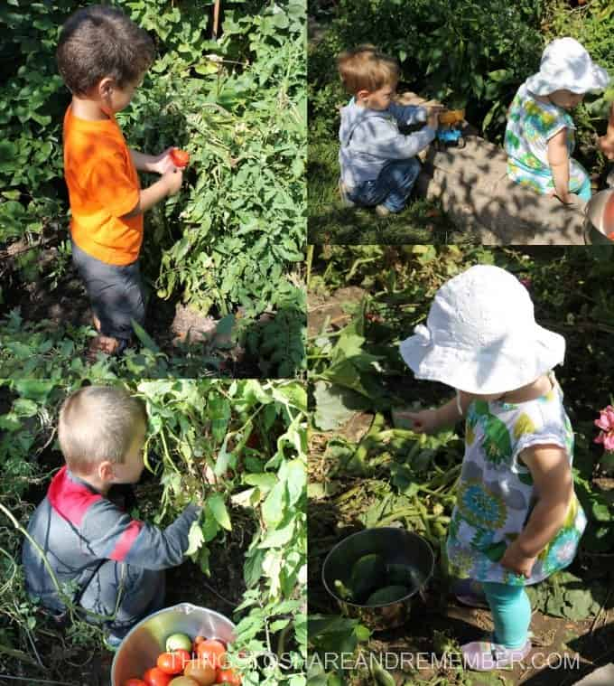7 Ways Kids Can Explore the Garden in the Fall
