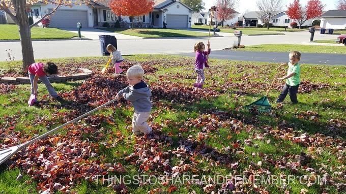 rake-leaves
