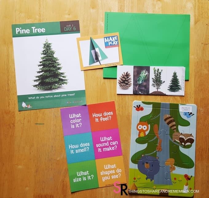 day-6-pine-tree