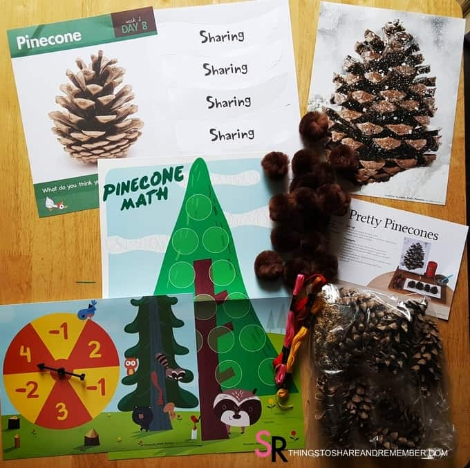 day-8-pinecone