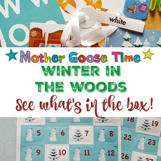 What's in the Box? Winter in the Woods Theme