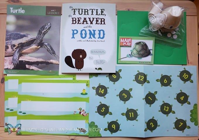 preschool turtle lesson pond life theme