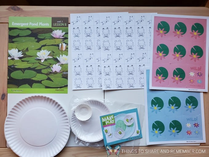 preschool emergent pond plants lesson pond life theme