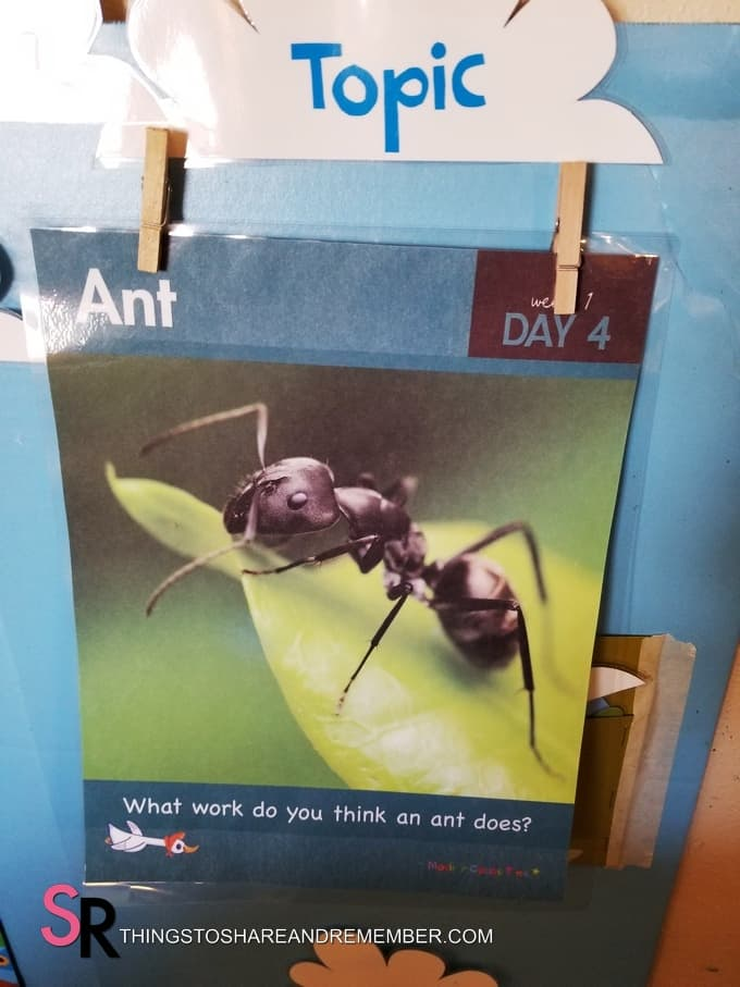 ant daily topic poster