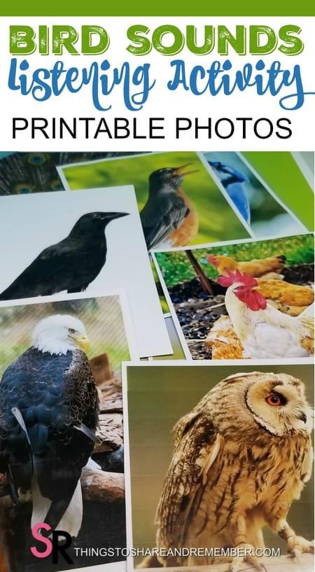 Bird Sounds Listening Activity with Printable Photos