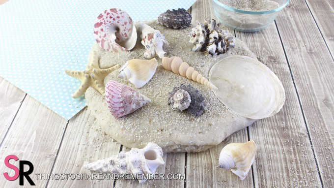sandy play dough with shells