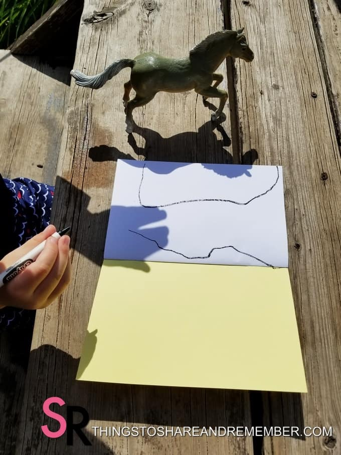 tracing horse shadow