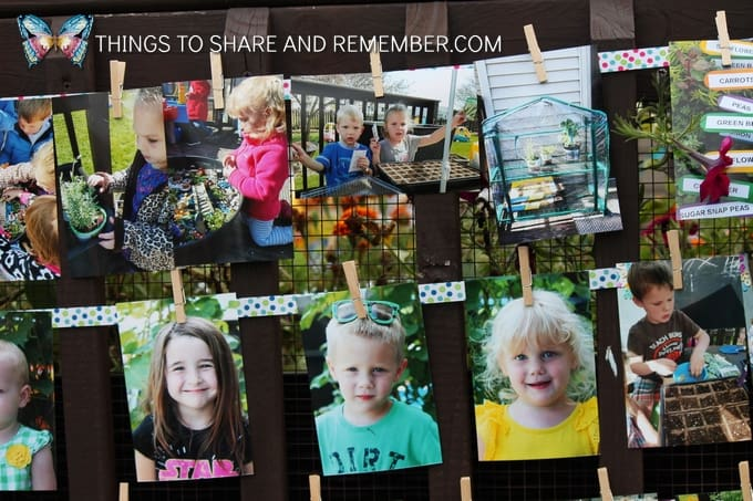 photos clipped on ribbon display